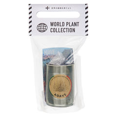 WORLD PLANT COLLECTION アガベ 関東当日便