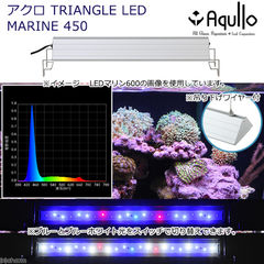 アクロ TRIANGLE LED MARINE 450 Aqullo Series  関東当日便
