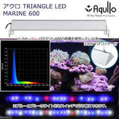 アクロ TRIANGLE LED MARINE 600 20000K Aqullo Series  関東当日便