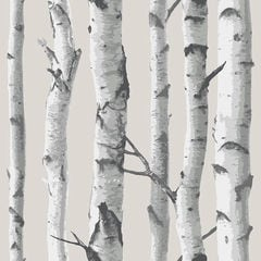 【サンプル専用】貼ってはがせるシール壁紙 Nu Wallpaper Birch Tree Peel And Stick Wallpaper / NU1650(NU3128)