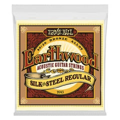 ERNIE BALL 2043 Earthwood Silk & Steel Regular 80/20 Bronze 13-56 Gauge アコースティックギター弦