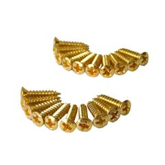 ALLPARTS SCREWS 7505 Pack of 20 Gold Pickguard Screws ピックガードビス